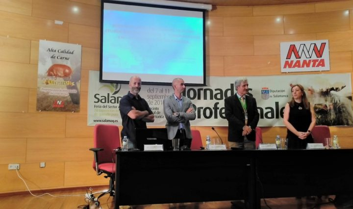 Proyectos Salamaq 16
