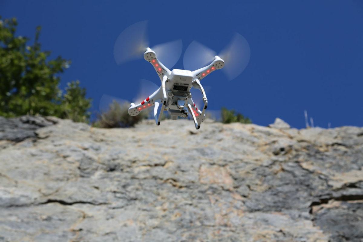 El dron documentando el bosque carbonífero.